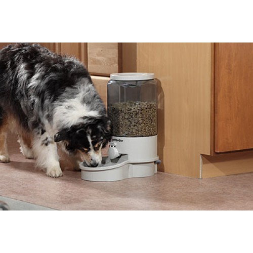 stuff image misc dogs feeder technology automatic for pintofeed pet gadgets