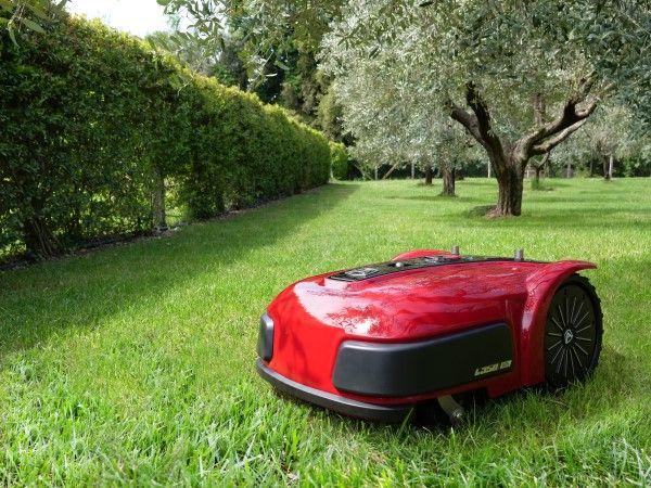 Ambrogio L350i on grass